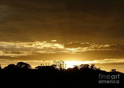 Golden Sunrise Poster by Bev Conover