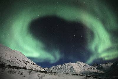 Northern Lights Talkeetna Mtns @ Poster by Calvin Hall