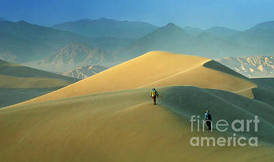 Mesquite Dunes Poster by Bob Christopher