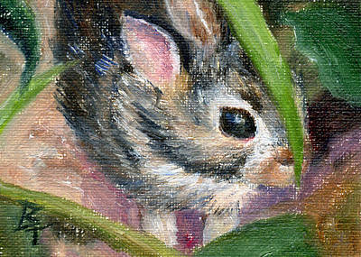 Poster featuring the painting Hiding Aceo by Brenda Thour