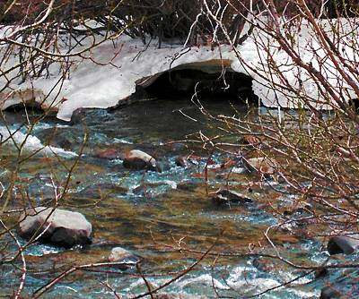 Poster featuring the photograph Blue Water Creek by Tammy Sutherland