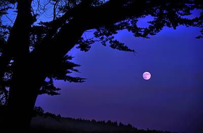 Full Moon Rising Over Sea Poster