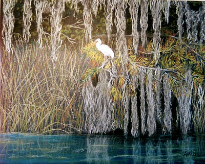 Poster featuring the pastel Ibis At Wakulla Springs by Jan Amiss