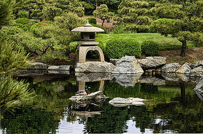 Poster featuring the photograph Japanese Garden by Catherine Fenner