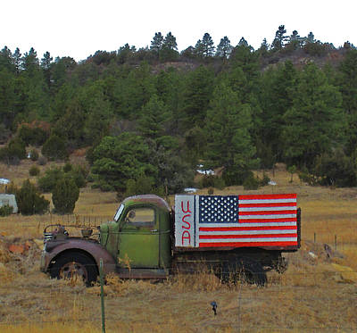 Poster featuring the photograph Love Usa by Tammy Sutherland