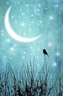 Moonlight Sonata Poster