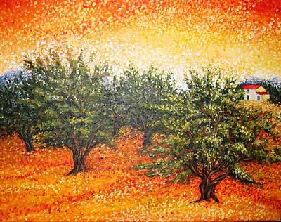 Olive Field In The Sunset Poster