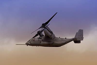 Osprey In Flight IIi Poster