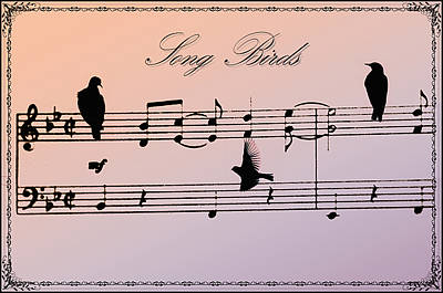 Songbirds With Border Poster by Bill Cannon