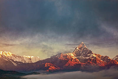 Sunrise On Anapurna Poster by Stefan Nielsen
