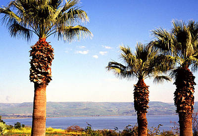 The Sea Of Galilee From The Mount Of The Beatitudes Poster
