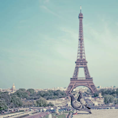 Two Doves In Front Of Eiffel Tower Poster by Cindy Prins