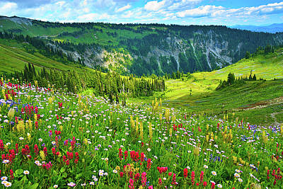 Wild Flowers Blooming On Mount Rainier Poster