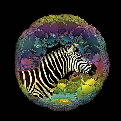 Zebra Poster by Julie Grace