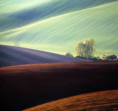 Photograph - Fields... by Krzysztof Browko