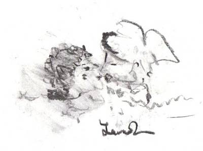 Drawing - Timeless Love by Laurie L