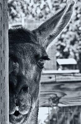 I See You Original by Arthur Bohlmann