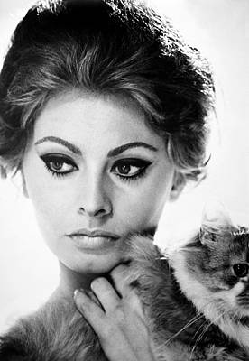 Photograph - Sophia Loren (1934-  ) by Granger