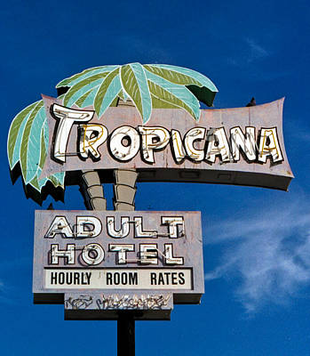 Tropicana Art Print by Matthew Bamberg