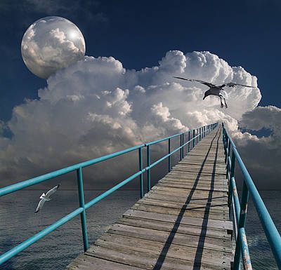 Gull Photograph - 1875 by Peter Holme III