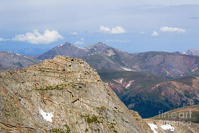 Vintage College Subway Signs Color - Mountain Scenery From Mount Evans Summit by Steven Krull