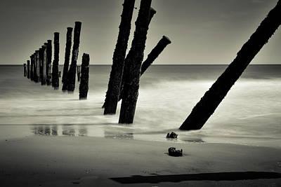 Mans Best Friend - Seascape by Robert Chlopas