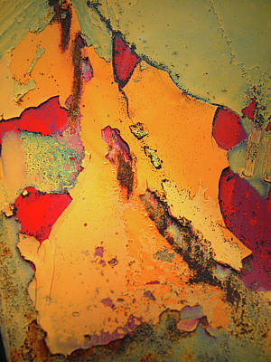 Photograph - Aging In Colour 6 by Tara Turner