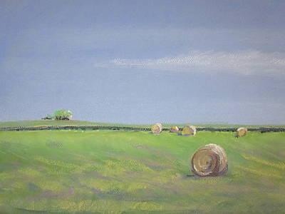 Pastel - Allendale Farmland by Sandra Strohschein