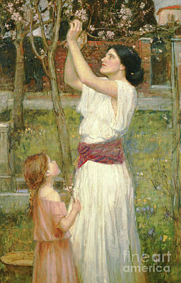 Mums Painting - Almond Blossoms by John William Waterhouse