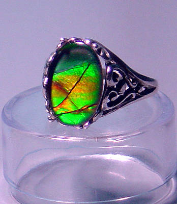 Ammolite Jewelry - Ammolite And Sterling Filigree Ring by Robin Copper