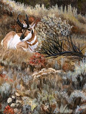 Autumn Splendor Art Print by Sheri Gordon