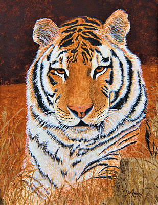 Painting - Bengal by Jan Amiss