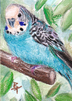 Painting - Blue Parakeet Aceo by Brenda Thour