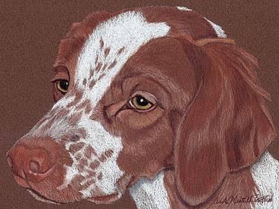 Brittany Spaniel Drawing - Brittany Vignette by Anita Putman