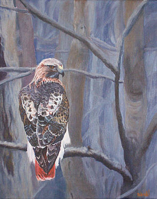 Red Tail Hawks Painting - Can't See The Forest For The Trees by Bill Werle