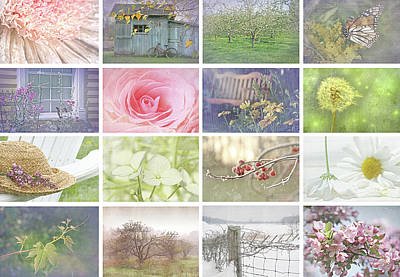 Flower Design Photograph - Collage Of Seasonal Images With Vintage Look by Sandra Cunningham