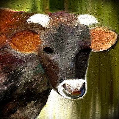 Cow Of Color Art Print
