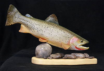 Cutthroat Trout On The Rocks Original by Eric Knowlton