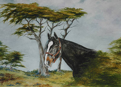 Early California Landscape Painting - Dressage Horse In Pebble Beach by Candace Bell