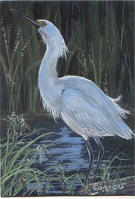 Egret Art Print by Peggy Conyers