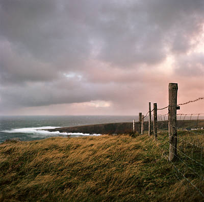 Barbed Wire Fences Photograph - Fence In Ireland by Danielle D. Hughson