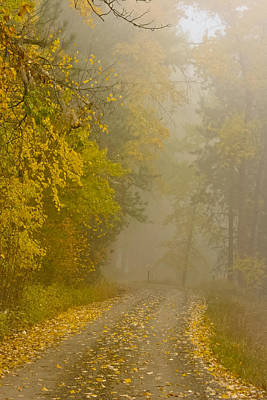 Pop Art Rights Managed Images - Foggy Autumn Morn Royalty-Free Image by Albert Seger