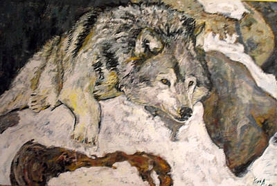 Grey Wolf Resting In The Snow Art Print by Koro Arandia