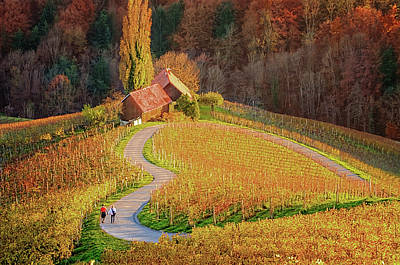 Styria Photograph - Heart Shaped Wine Road In Slovenia In Autumn, Herzerl Strasse by Andrej Safaric