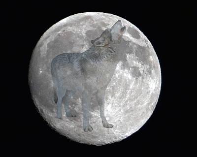 Howl At The Moon Art Print