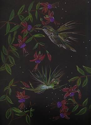 Hummingbird....not...... Art Print