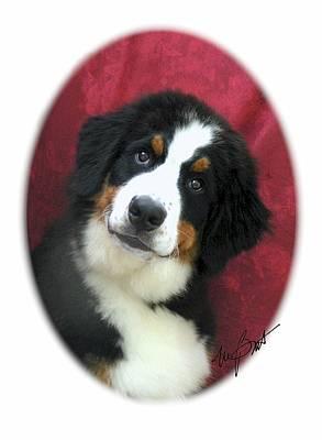 Pup Digital Art - I Love You by Maxine Bochnia