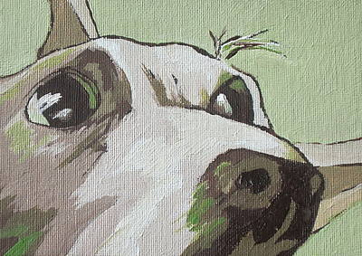 Puppy Painting - Jack Russells Never Stay Still by Sandy Tracey