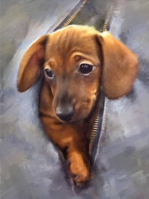 Tiny Dog Digital Art - Miniature Dachshund by   DonaRose