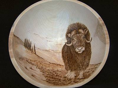 Pyrography - Musk Ox On Birch Bowl by Adam Owen